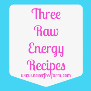 Trail Eats: Three Raw Energy Recipes