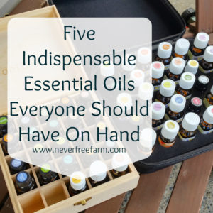 Five Indispensable Essential Oils Everyone Should Have On Hand