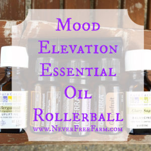 Mood Elevation Essential Oil Rollerball