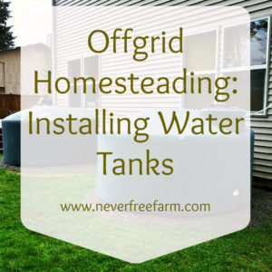 Offgrid Homesteading: Installing Water Tanks