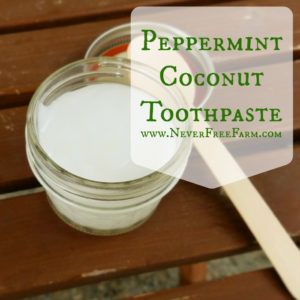 Handcrafted Peppermint Coconut Toothpaste