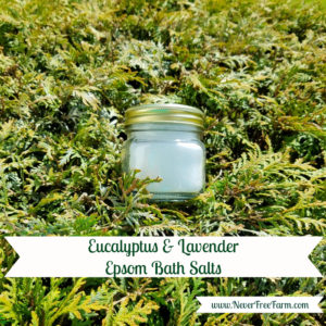 Eucalyptus and Lavender Epsom Bath Salts
