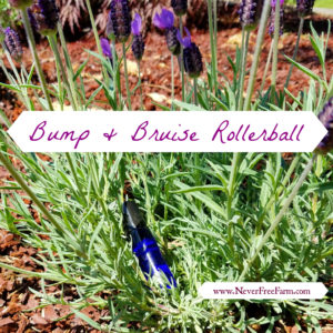 Bump & Bruise Essential Oil Rollerball