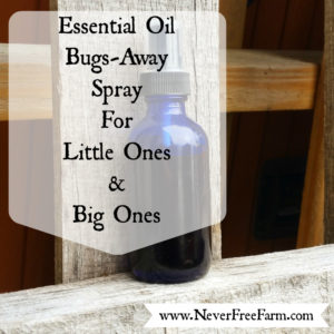 Bugs Away Spray For Little And Big People