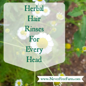 Herbal Hair Rinses For Every Head