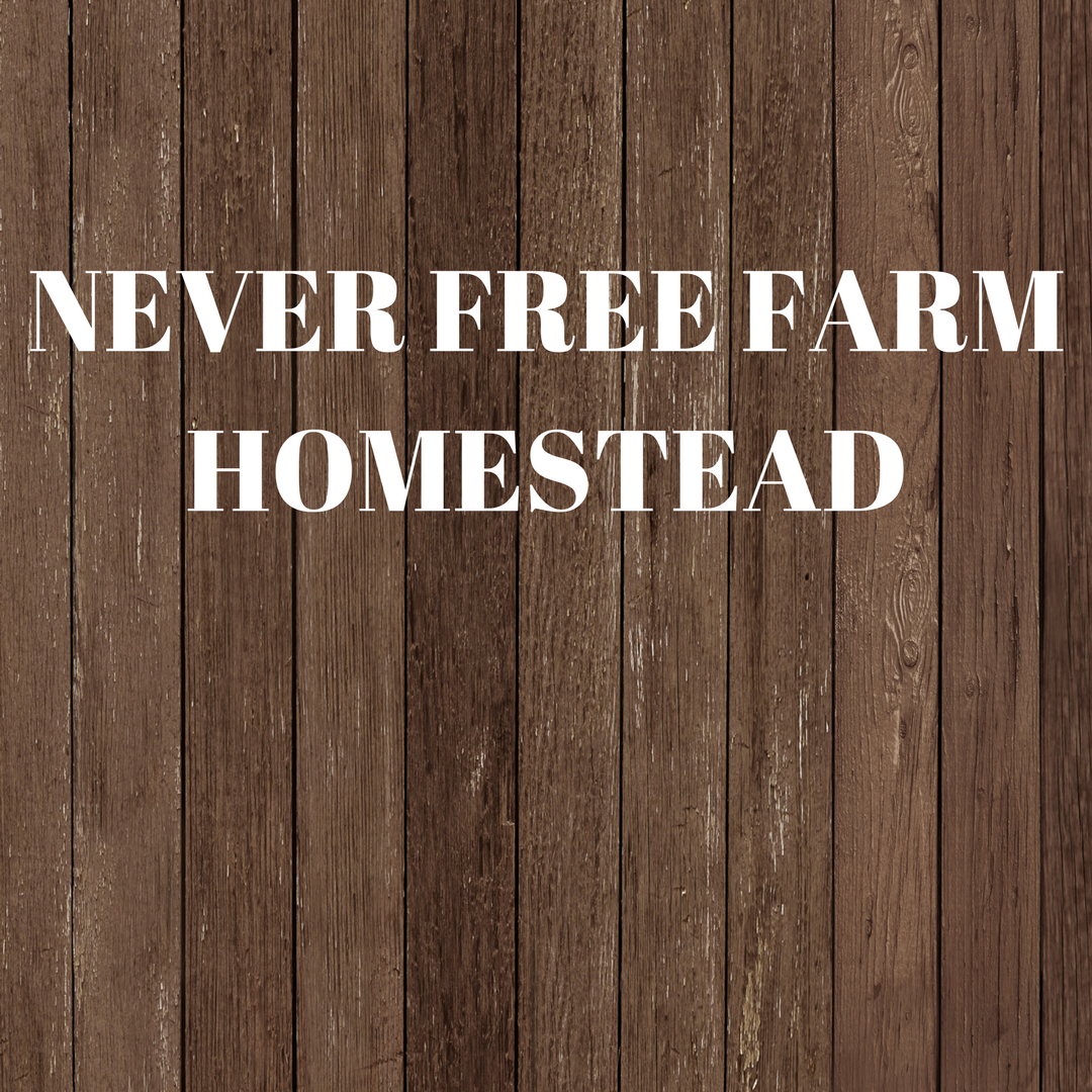 Handcrafted hemp seed butter never free farm homestead for Free homestead