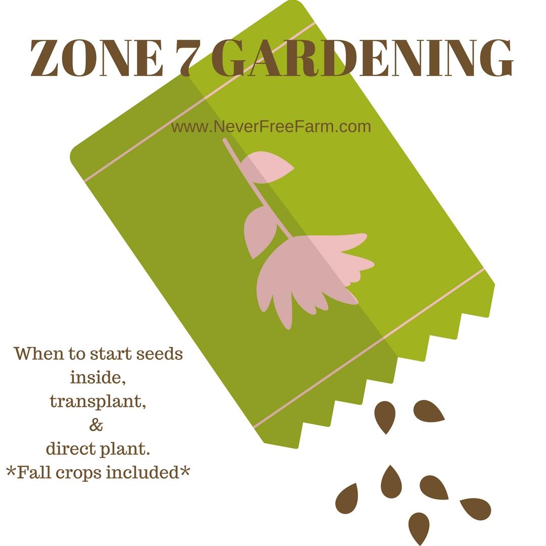 Zone 7 Gardening